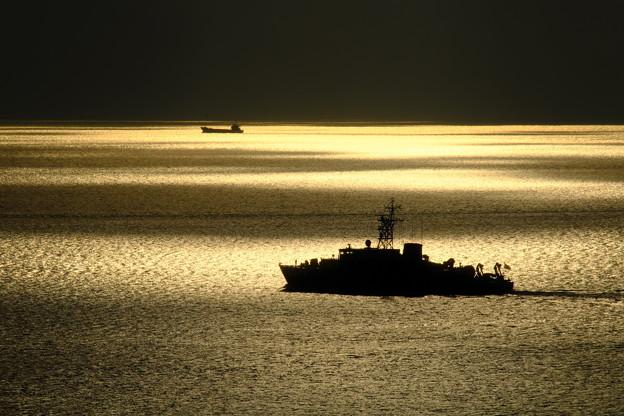 金色の海へ