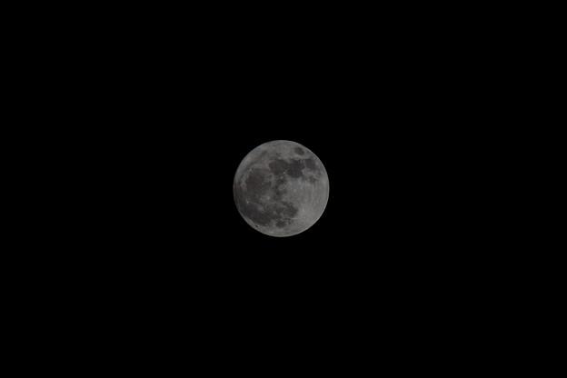 写真: 今年最後の満月