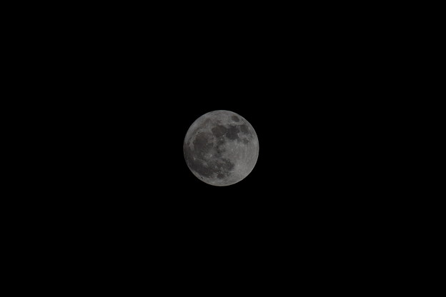 Photos: 今年最後の満月
