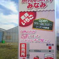 Photos: こんばん侍!2015年はい...