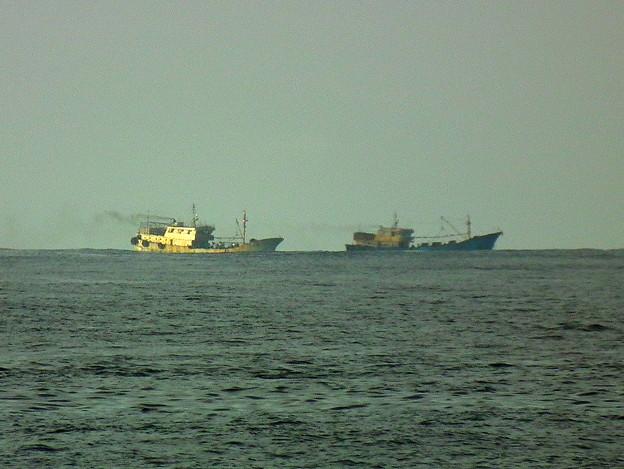 バリバリお仕事中の珊瑚密漁船@小笠原諸島近海