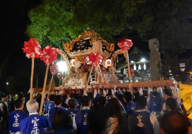 17-英賀神社-0219