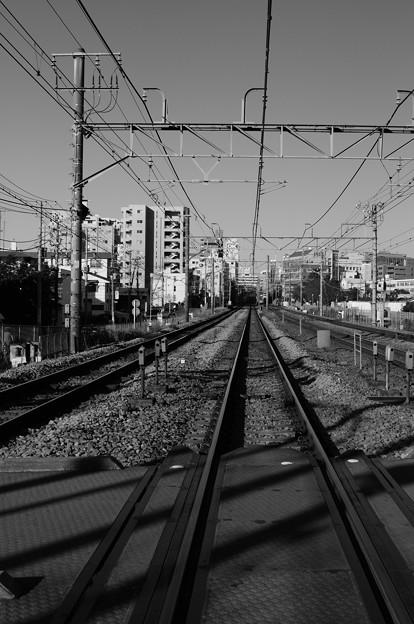 写真: 20091218_085624