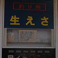 写真: 20091226_165507