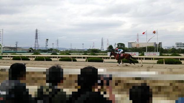 写真: 20170504_園田競馬kako-avO6ingmcEtDOqa6