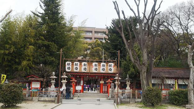20180110_松山神社_0543