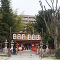 写真: 20180110_松山神社_0543