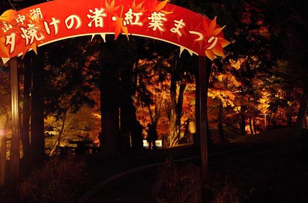 2014富士山麓の秋141「山中湖紅葉ライトアップ」