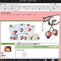 写真: u9-goo-blog_20091121