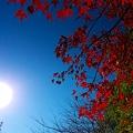 秋晴れの朝