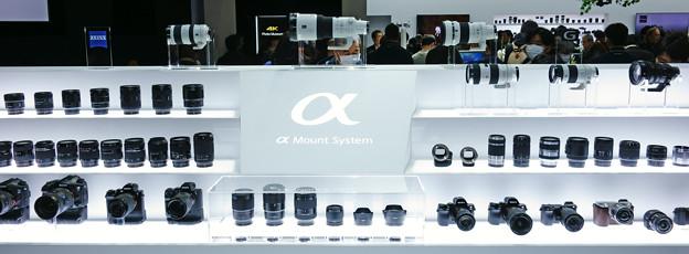 Sony α System