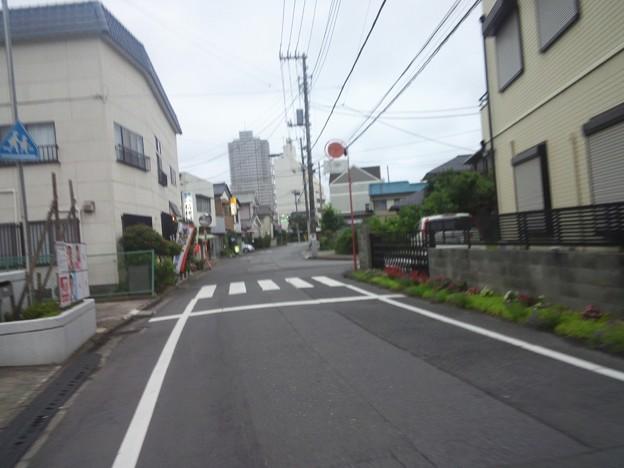 Photos: すのっぶ通信2017.8.10