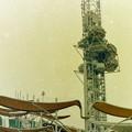 写真: EXPOタワー