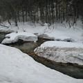 写真: 雪の川