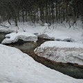Photos: 雪の川
