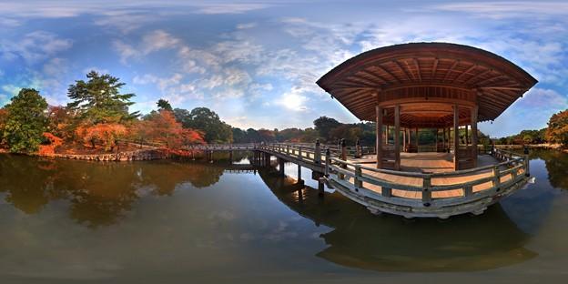 奈良公園 浮身堂