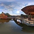 Photos: 奈良公園 浮身堂