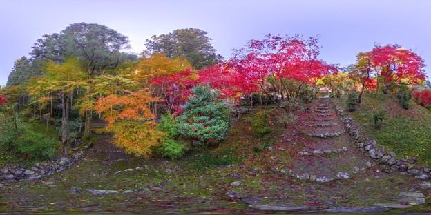 写真: 洞慶院 紅葉  360度パノラマ写真〈1〉