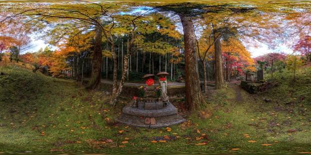 洞慶院 紅葉  360度パノラマ写真〈3〉