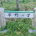 Photos: 早野の里