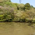 Photos: 五郎池という名の池