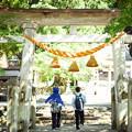 写真: 合掌村 八幡神社