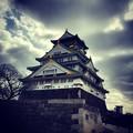 写真: 150228 大坂城02