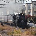 Photos: 8735レ D51誕生記念号 (4)
