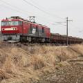 安中貨物 5094レ EH500-51牽引 (7)