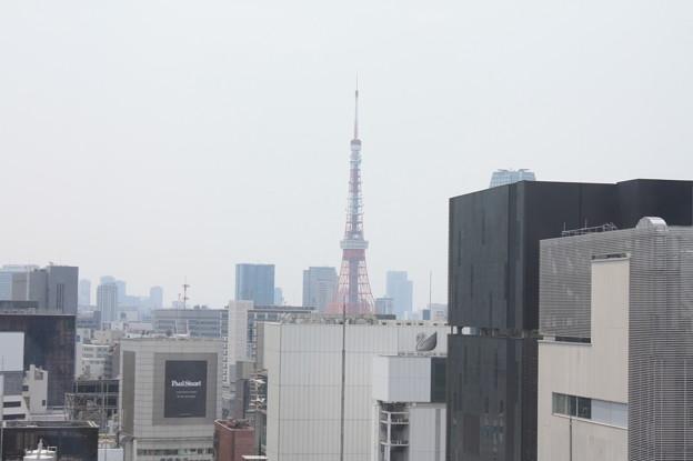 GINZA SIXの屋上階から見た銀座の街並み 17