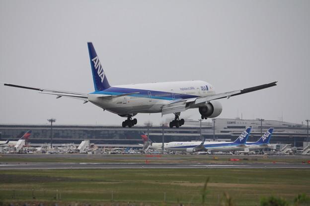 全日空 ANA ボーイング777-300ER JA735A (7)