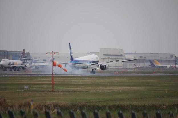 Photos: 全日空 ANA ボーイング777-300ER JA735A 着陸 (2)