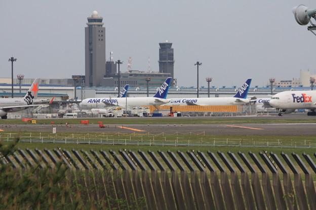 さくらの山公園より成田空港第一ターミナル駐機場を望む