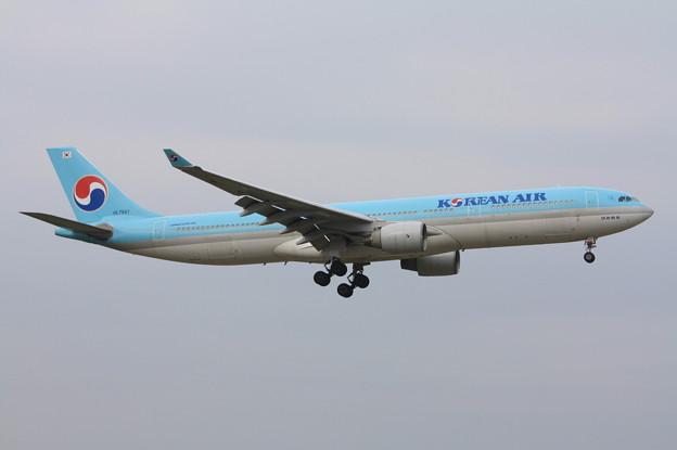 大韓航空 エアバスA330-300 HL7587 (1)