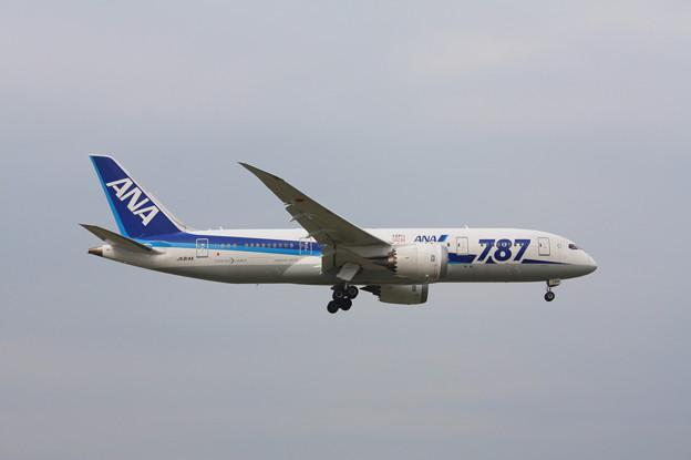 Photos: 全日空 ANA ボーイング787-8 JA814A (1)