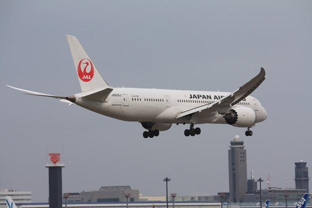 日本航空 JAL ボーイング787-8 JA829J