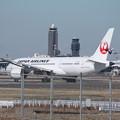 Photos: 日本航空 JAL ボーイング787-8 JA836J (1)