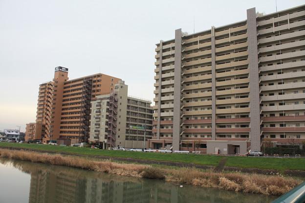 桜川沿いに建つマンション群