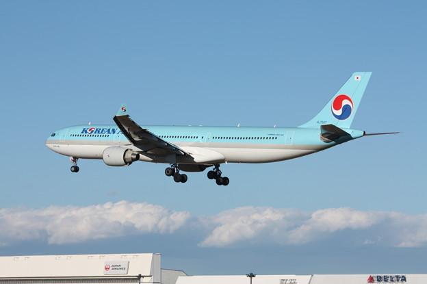 大韓航空 エアバスA330-300 HL7587 (2)