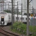 Photos: 651系K105編成 9114M 急行ぶらり横浜・鎌倉号