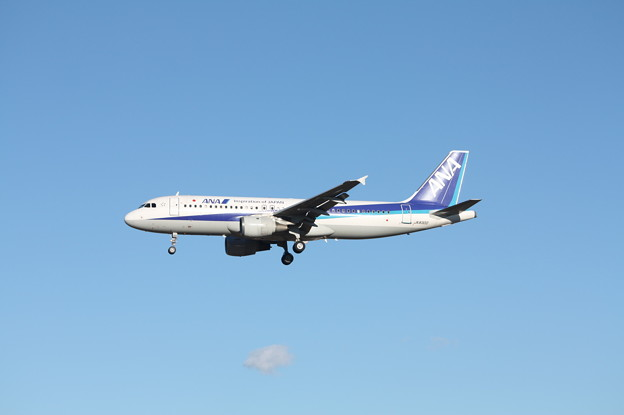 全日空 ANA エアバスA320-200 JA8300