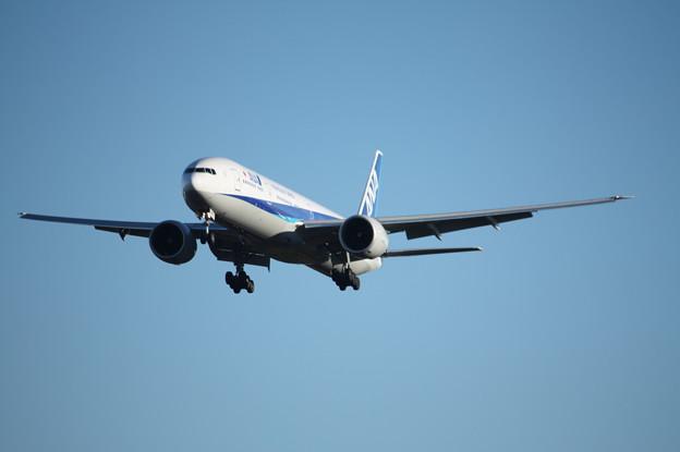 A滑走路に着陸するANAボーイング777-300ER (1)