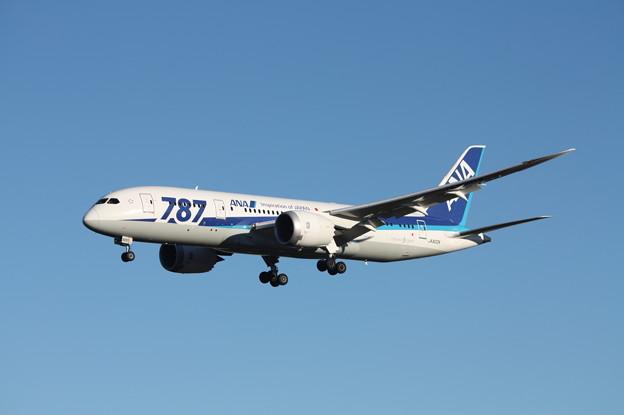 全日空 ANA ボーイング787-8 JA820A