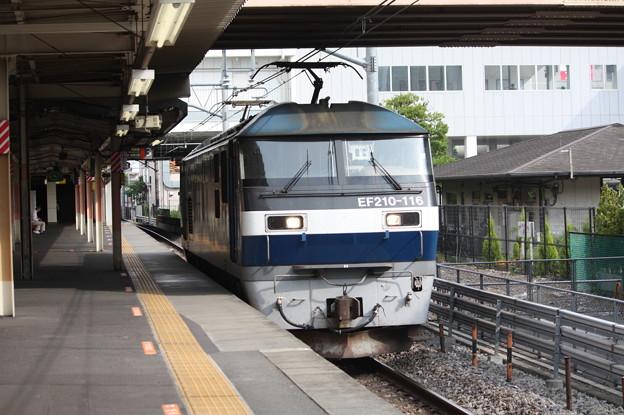 EF210-116 (5)