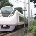 E657系K11編成 59M 特急 ときわ59号 勝田 行