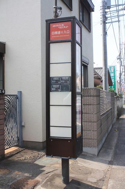 東武バスウエスト バス停 白樺通り入口