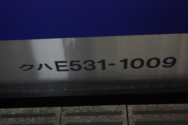 クハE531-1009 車番表記 外