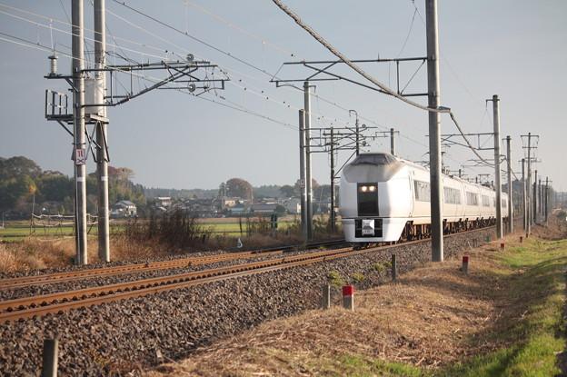 写真: 651系K105編成 9424M 快速ぶらり高尾散策号