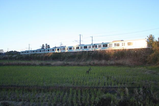 秋の田園風景を走りゆくE501系 (2)