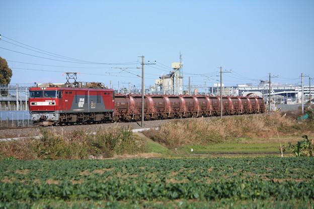 畑の中を行くEH500-14牽引5094レ安中貨物 (7)